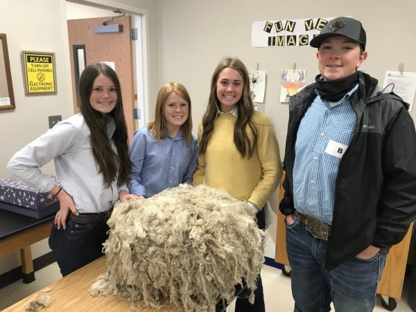 Wool Judging State Bound Team