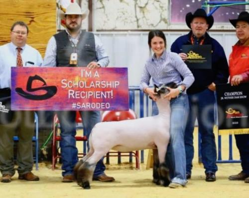 Kambrie Hogue Wins Champion ewe