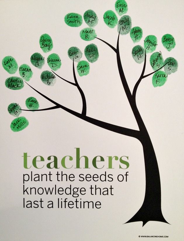 Quote: Teachers plant the seeds of knowledge that last a life time.