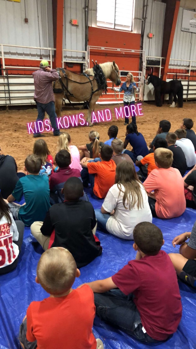Kids, Kows, and More