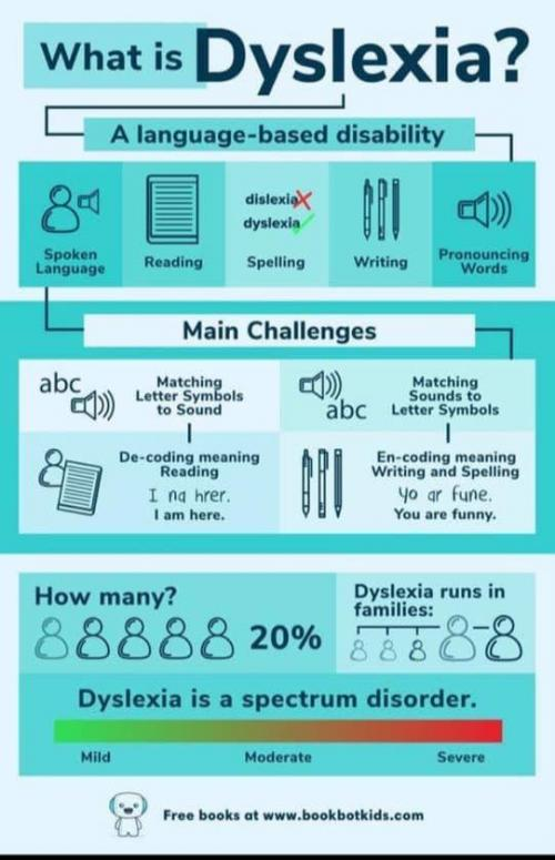 What is Dyslexia Infographic
