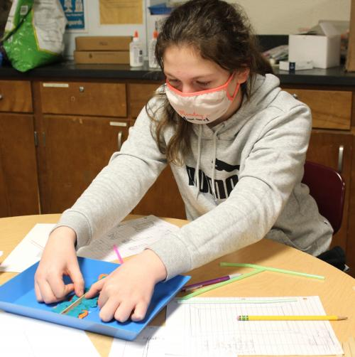 girls work on retaining wall in science class
