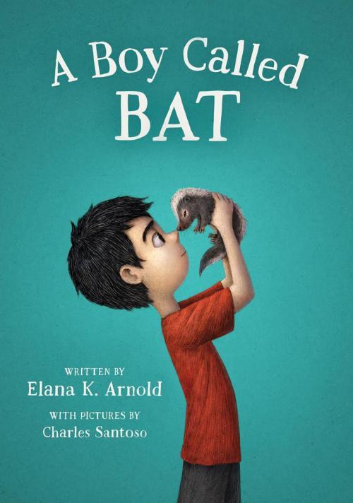 photo of book cover A Boy Called Bat