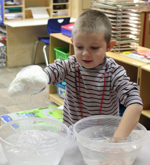 testing blubber in ice water