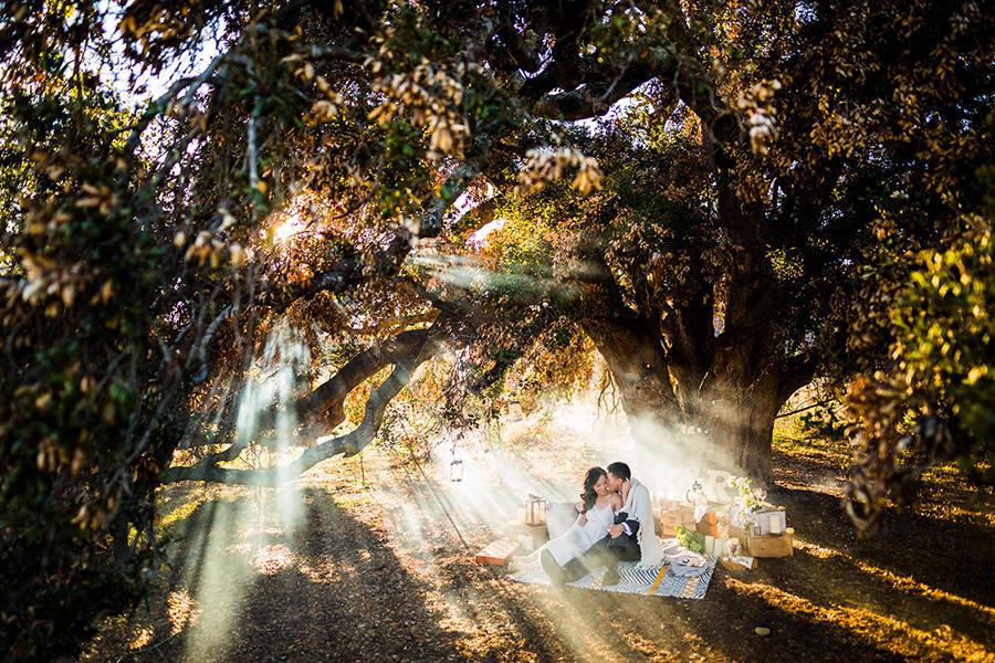 picnic wedding photography