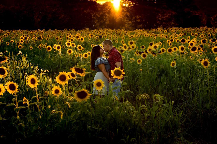 outdoor sunflower engagement photo