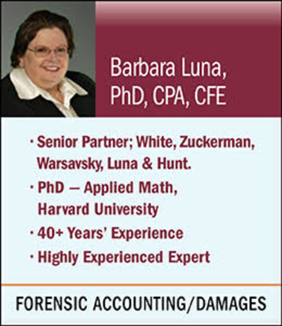 Accounting Expert Witness Listings Seak Inc Expert Witness Directory