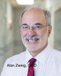 Alan Zweig Expert Witness