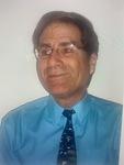 Steven L. Bernstein, P. E., F. ASCE Expert Witness