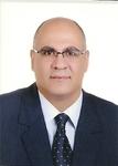 Bashar Malkawi, SJD Expert Witness