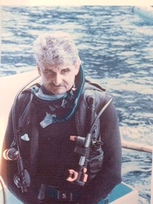 Joseph C Plano, Course Director Expert Witness