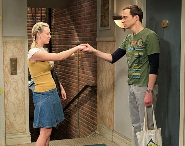 THE BIG BANG THEORY Season 6 Episode 15 The Spoiler Alert Segmentation