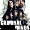 CRIMINAL-MINDS-Season-12-DVD