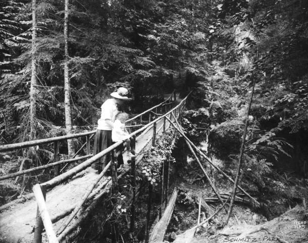Bridge_in_schmitz_park_1910_sma_30259