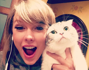 14 Food Facts You Never Knew About Taylor Swift