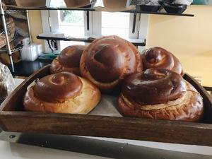 7 Authentic Jewish Foods to Eat Near Tulane's Campus This Rosh Hashanah