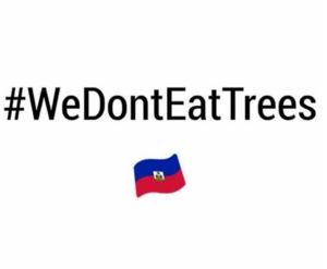 A Meteorologist Claimed That Haitians Eat Trees, Which Is Absolutely Ridiculous