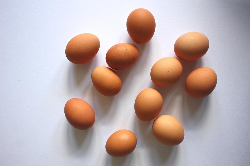 egg yolk, chicken, egg