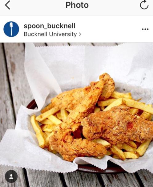 chicken hips essay