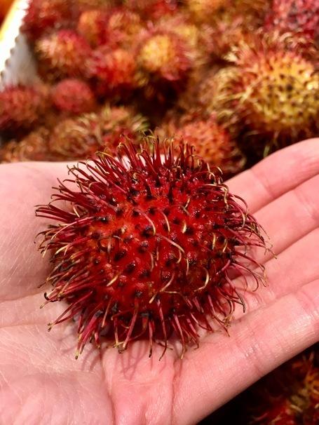What Rambutan The Alien Looking Fruit