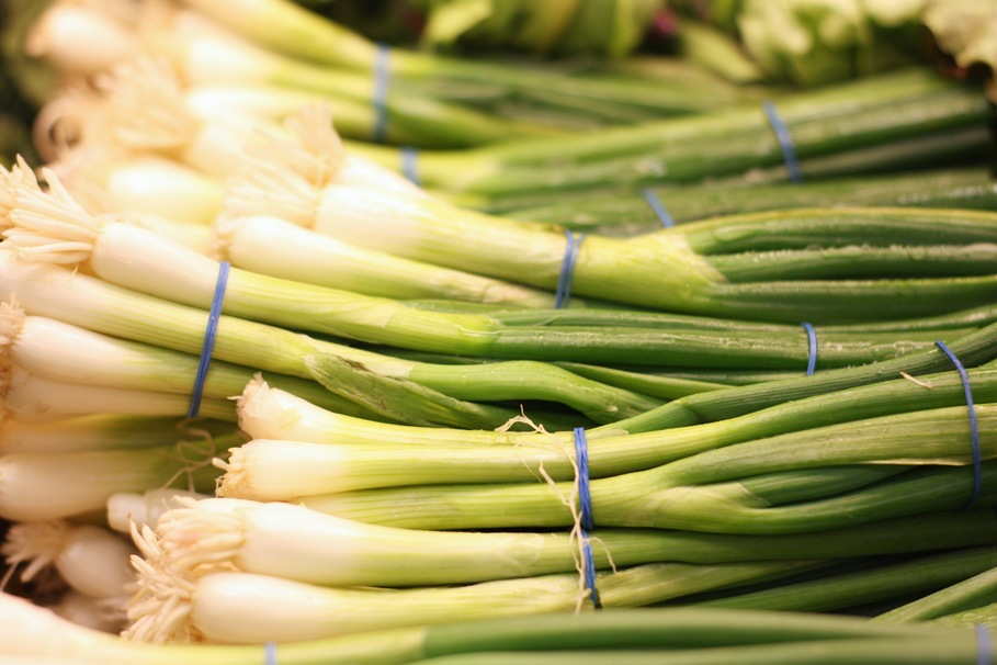 Image of Onion Leek