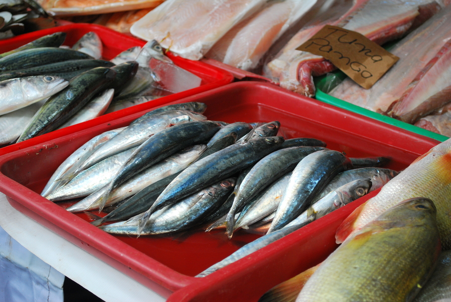 Is there such a thing as sustainable seafood for What does sustainable fish mean