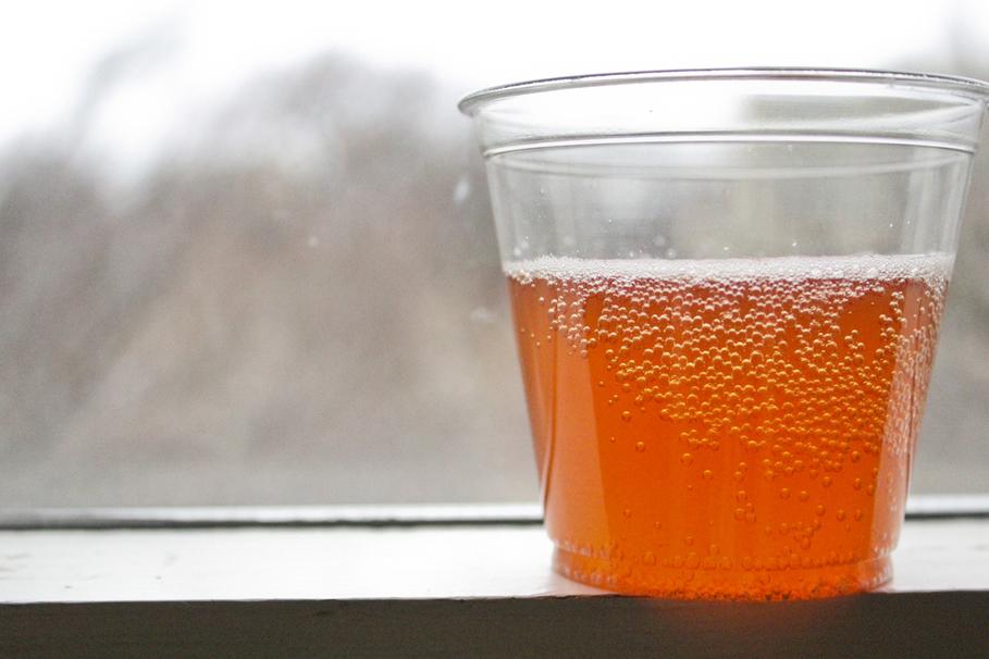 Spilling the Tea on Fermented Tea