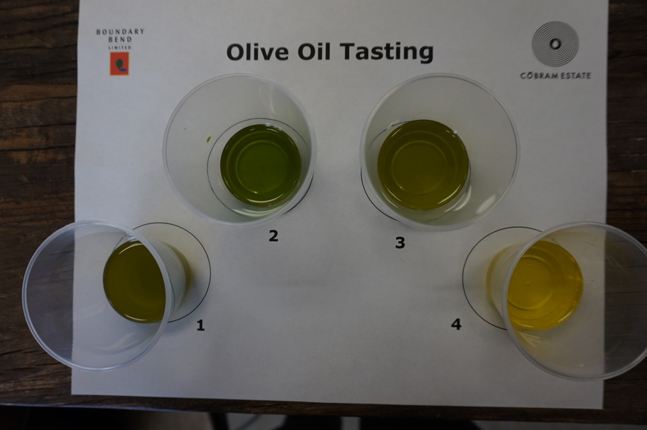 5 Things We Learned About Extra Virgin Olive Oil
