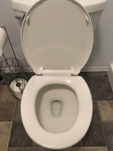 Supposedly You Can Clean Your Toilet With Coke, So I Tried It