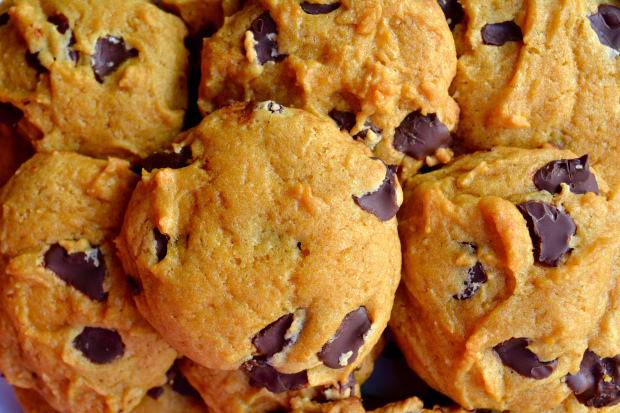 Pumpkin Spice and Everything Nice Cookies