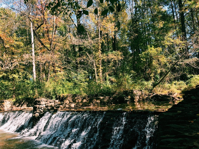 The Best Picnic Spots in Atlanta for Tired, Stressed College Students