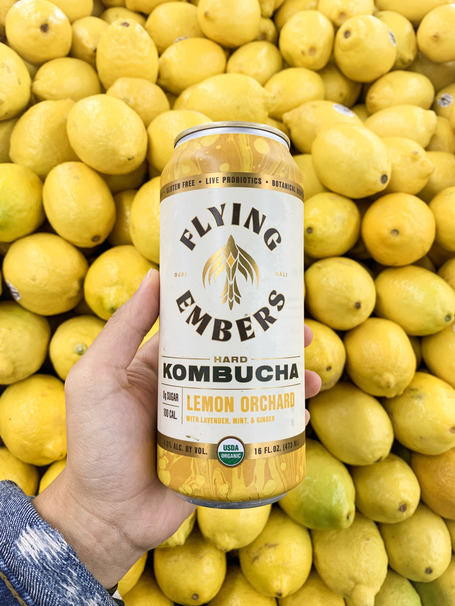 Let's Talk About Hard Kombucha and Which Brew Is Right for You