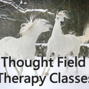 thought field therapy classes certification with ivory lanoue