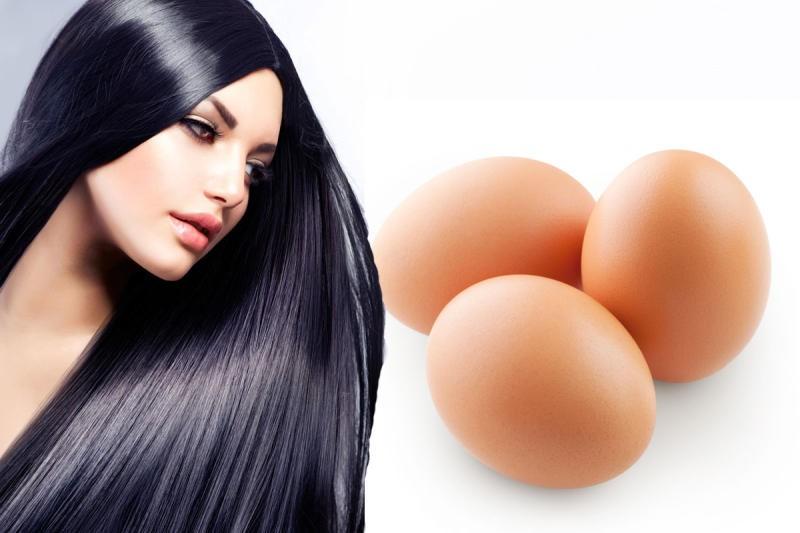 فوائد بياض البيض للشعر