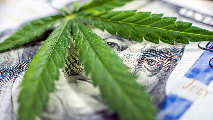 Empresas de cannabis: IPO y M&A