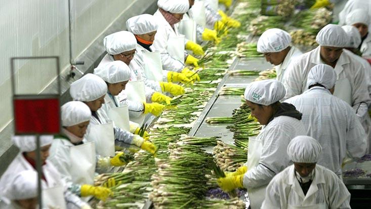 362280-agroexportaciones-superaron-los-us1900-millones-entre-enero-y-abril