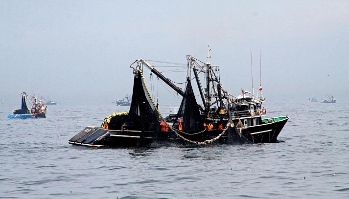372333-tc-los-permisos-de-pesca-otorgados-por-el-poder-judicial-son-irregulares