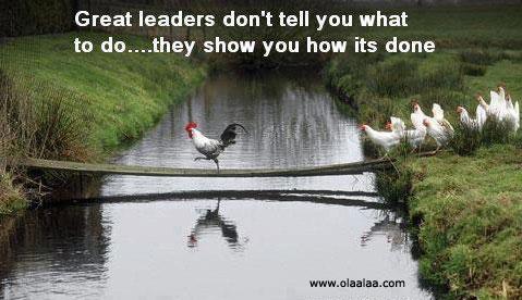 Ideas para liderar mejor