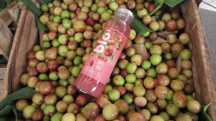 331445-grupo-aje-lanzo-bebidas-de-super-fruits-de-la-amazonia