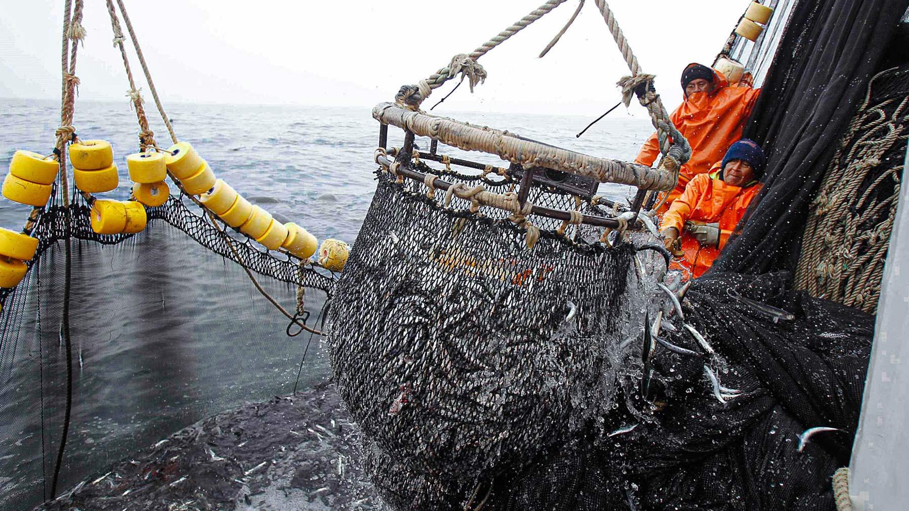 2020-el-mal-desempeno-de-la-segunda-temporada-de-pesca-obliga-las-pesqueras-a-retrasar-inversiones