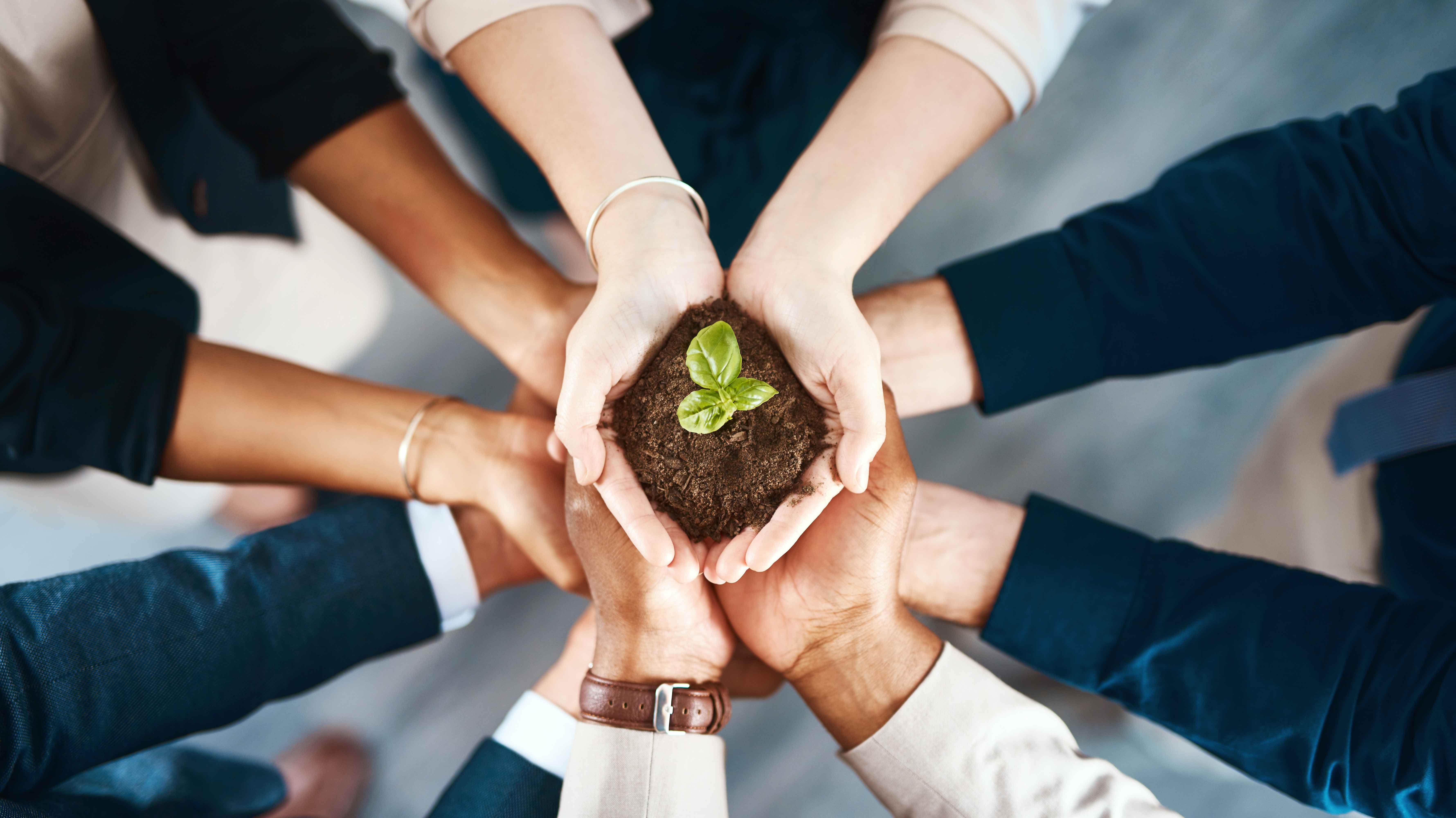 la-sostenibilidad-se-abre-paso-entre-las-empresas-peruanas