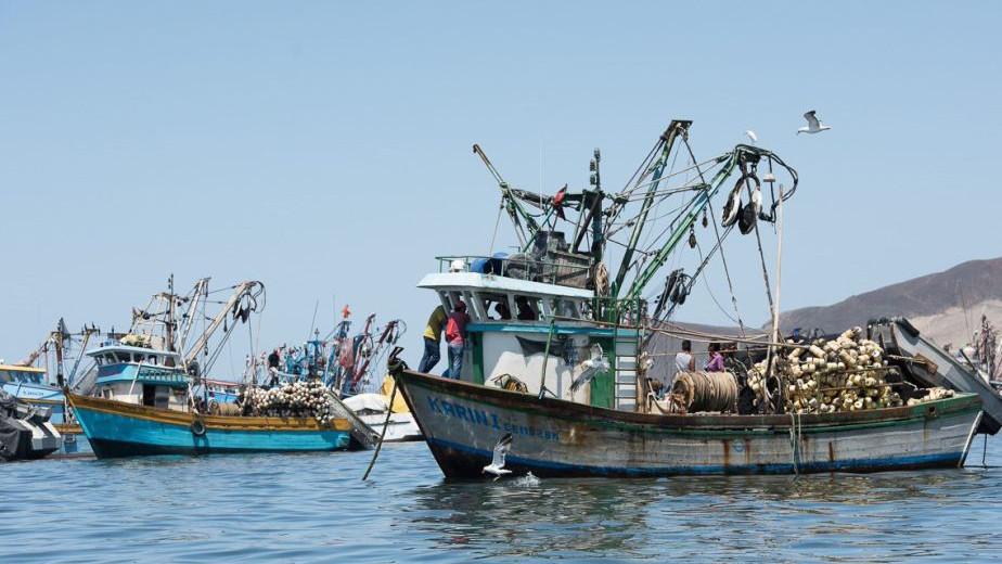 Pesqueras ponen en pausa los mantenimiento de plantas y flotas por el Covid-19