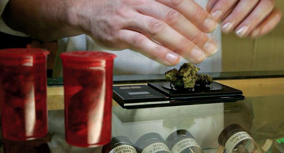 khiron-el-mercado-de-cannabis-medicinal-valdra-us100-millones-en-8-anos