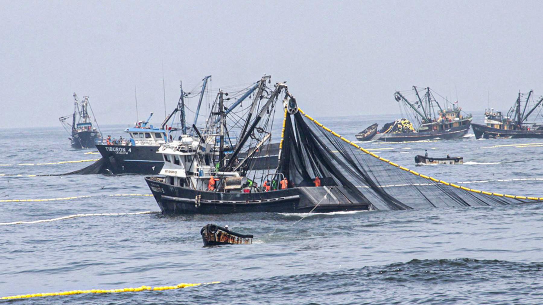 aprueban-protocolo-y-criterios-para-la-reactivacion-pesquera-ante-el-covid-19