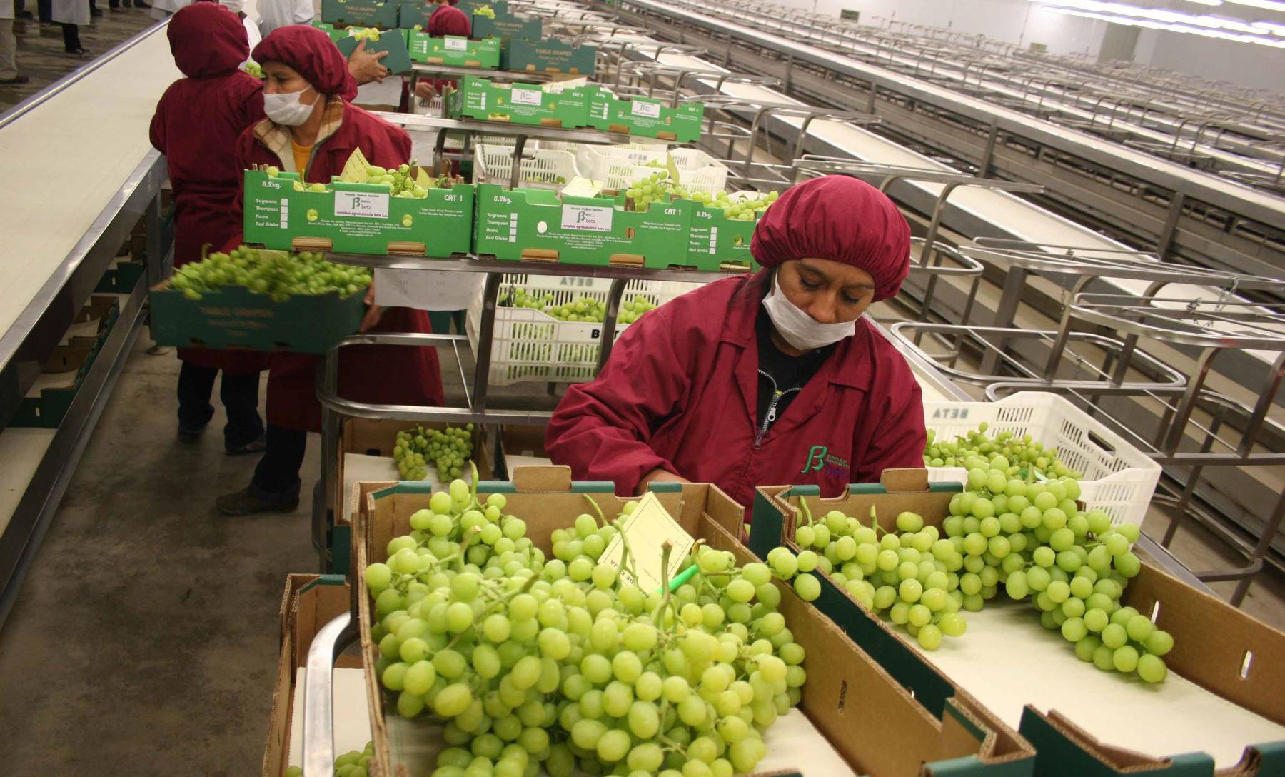 Agroexportaciones son las únicas que crecen en el primer cuatrimestre del año