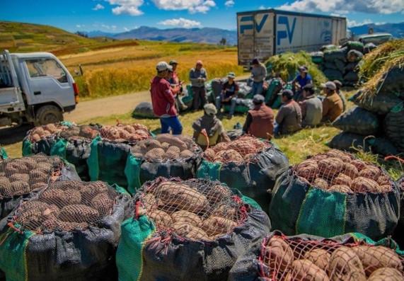gobierno-crea-fae-agro-programa-contara-con-s2000-millones