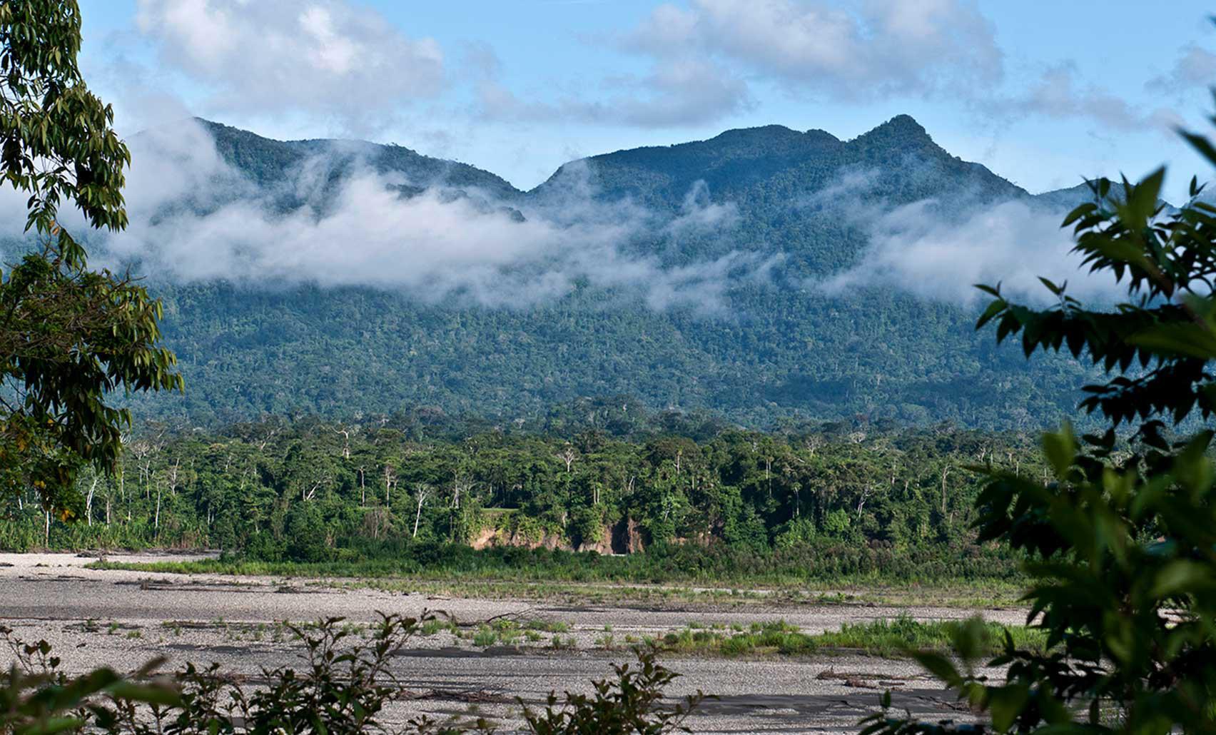 Áreas naturales protegidas: mayores facilidades para el ingreso del sector privado