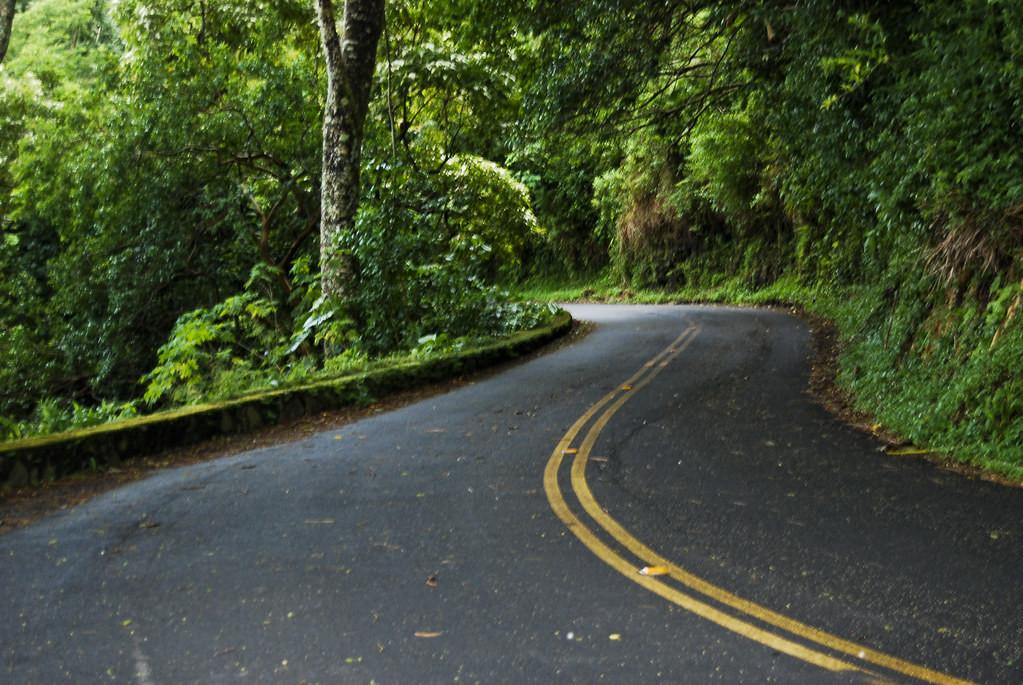 Los caminos inesperados de las carreras profesionales