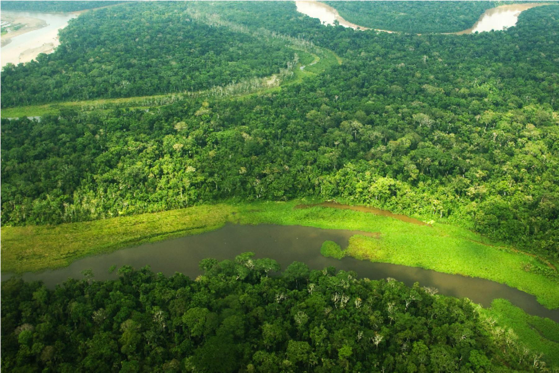 walter-martos-anuncio-inversion-de-s6000-millones-en-800-proyectos-en-la-amazonianbsp
