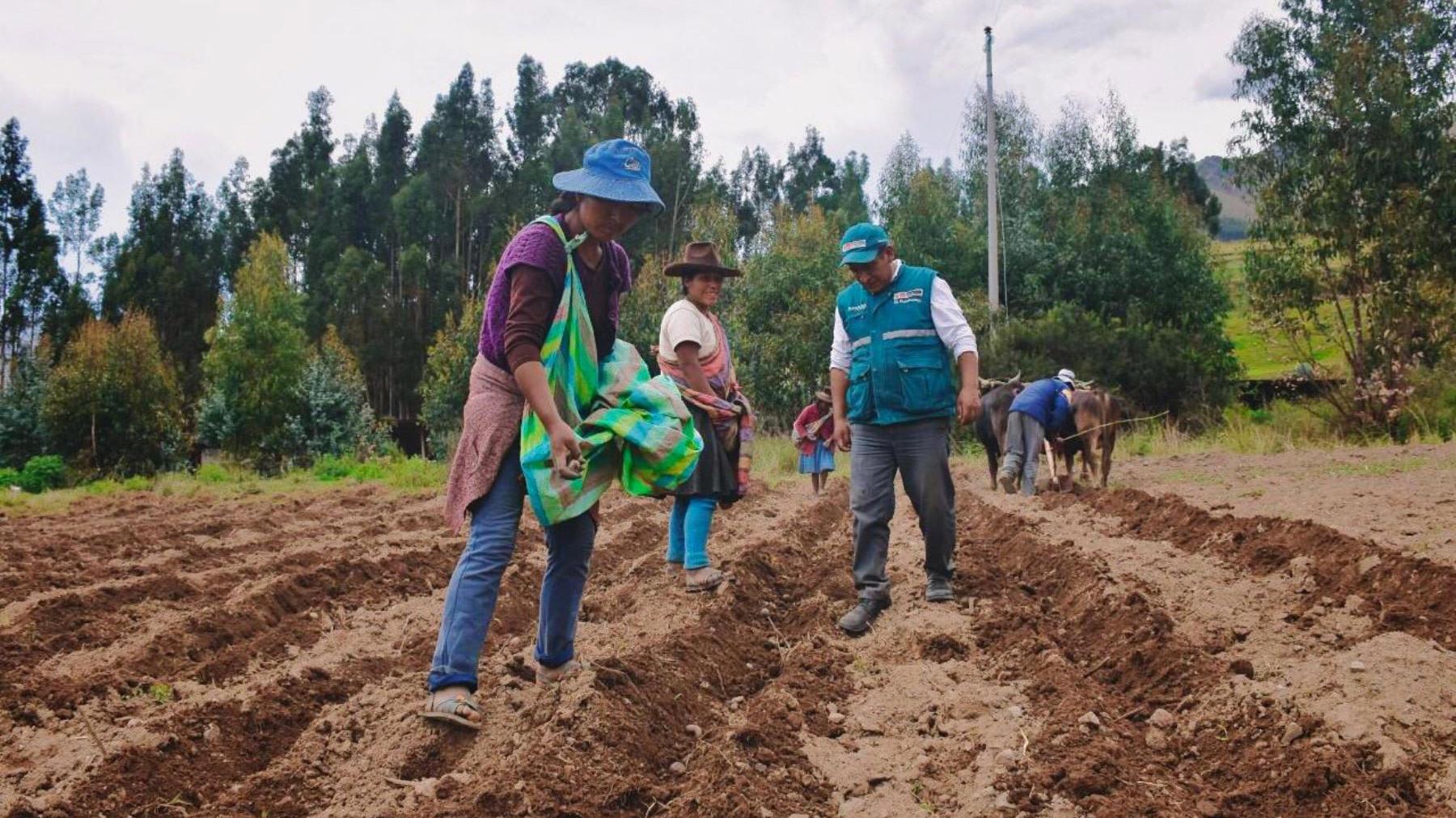 empresas-agroexportadoras-afrontaran-mayor-presion-salarial